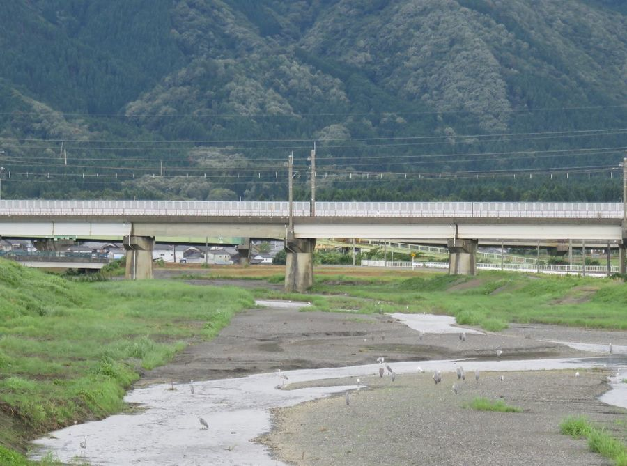 180729川.jpg