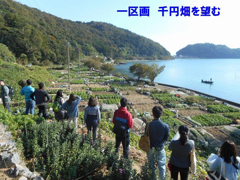 141019okishima7.jpg